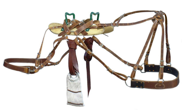Images Of Saddles And Horse Equipment