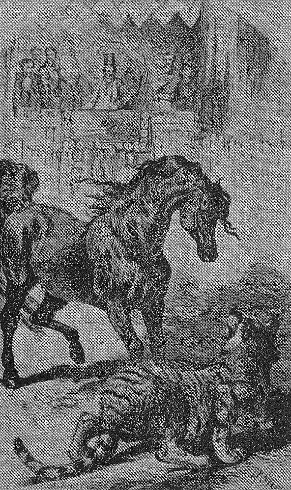 Tiger Eating Horse Tibetan Horse Eating Blood